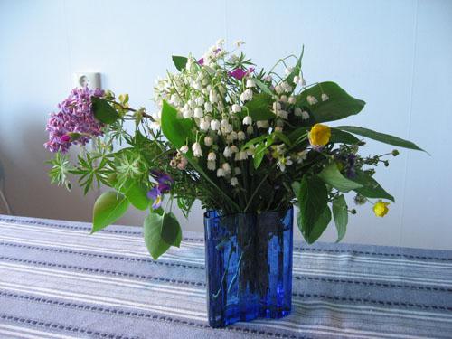 Blommor från Norrviken.