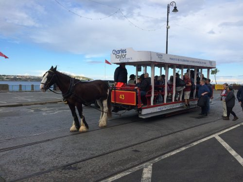 Hästspårvagnarna i Douglas gick mellan färjan och elektriska spårvagnen, och hade fasta avgångstider och egen turtidtabell. När hästarna blivit för gamla för att jobba flyttas de till ett hästpensionat utanför stan, där de får ta det lugnt och vila upp sig.
