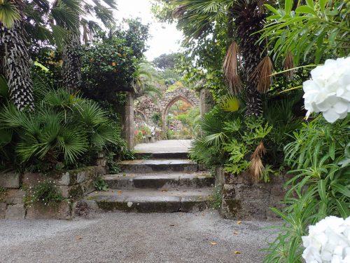 Ruiner i Abbey Garden.